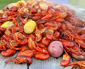 Acadia Parish Crawfish - Catering and Live Sales