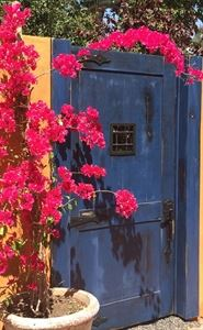 Behind The Blue Door