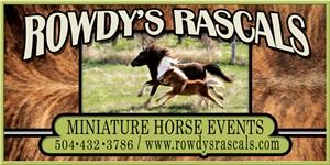 Rowdys Rascals Pony Parties and Petting Zoo